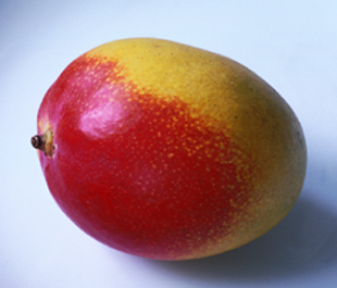 shed fat with mangoes